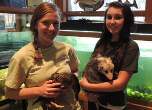 Two female Marsh Ranger volunteers, holding a duck and an opossum