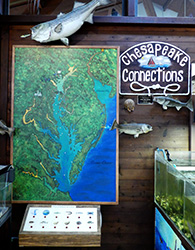 Map of Chesapeake Bay with push button board