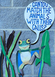 Painting of frog saying Can you match the animals with their calls?