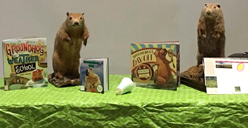 Mounted groundhogs with books and calendar