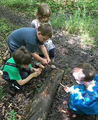 Kids investigating fallen tree trunk by hiking trail